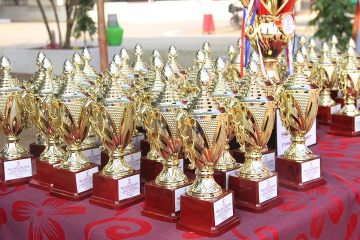 S R S Vidya Mandir-Prizes