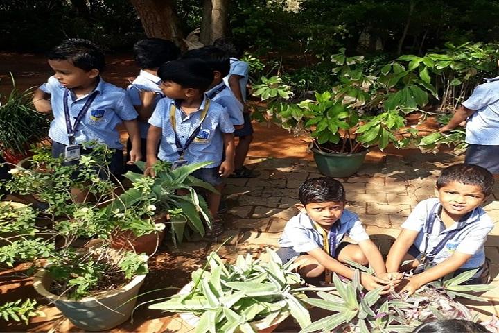 S K P Vanitha International School-Plantation