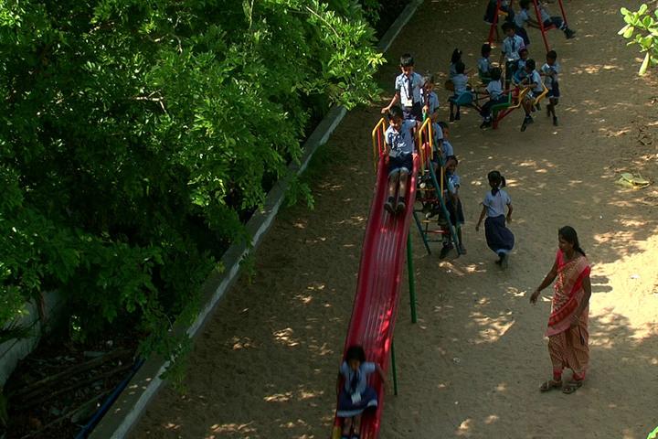 Sai Nursery and Primary School-Kindargarden