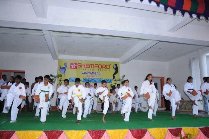 Shemford Futuristic School-Karate Activity