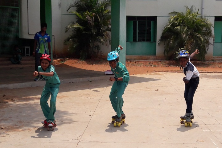 Shempark Public School-Skating