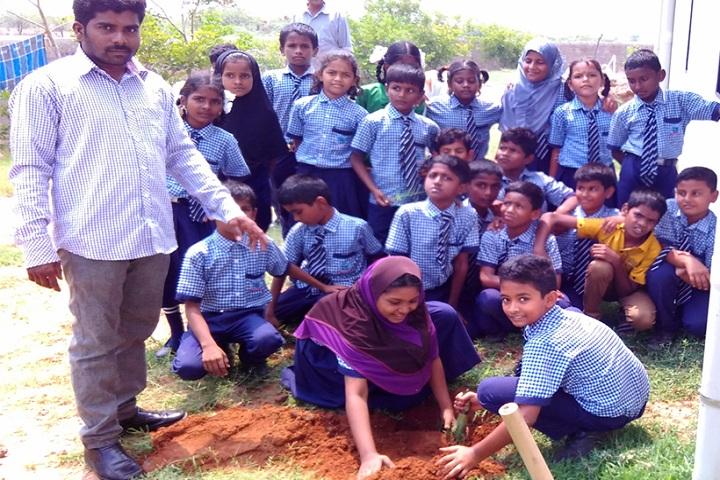 Shifan Noor Global Academy - Field activities