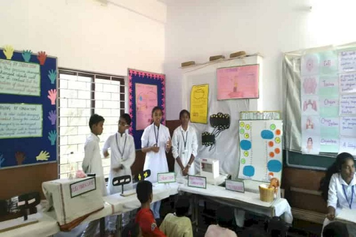 Siddarth Village School-Science Fair