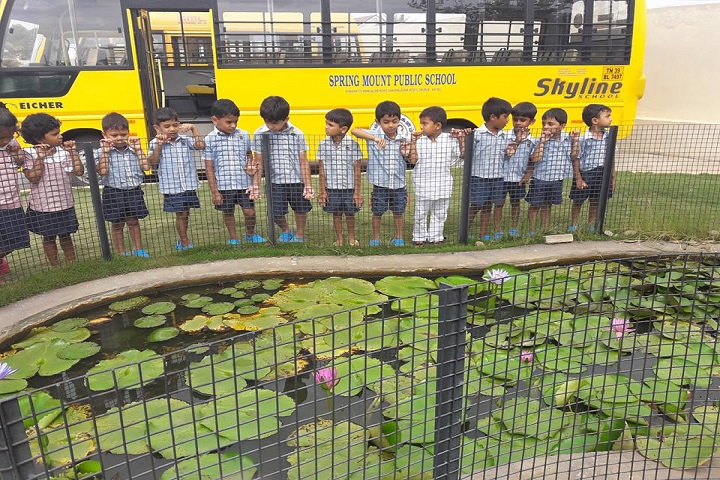 Spring Mount Public school-Bus Transport