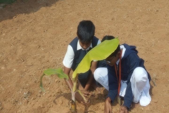 Sri Gurukulam Secondary School-plating trees