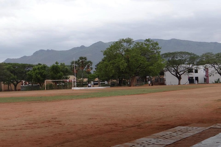 Sri Vidya Mandhir School-playground