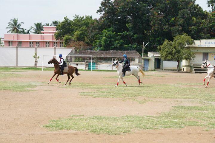 St Johns National Academy- Horse Riding
