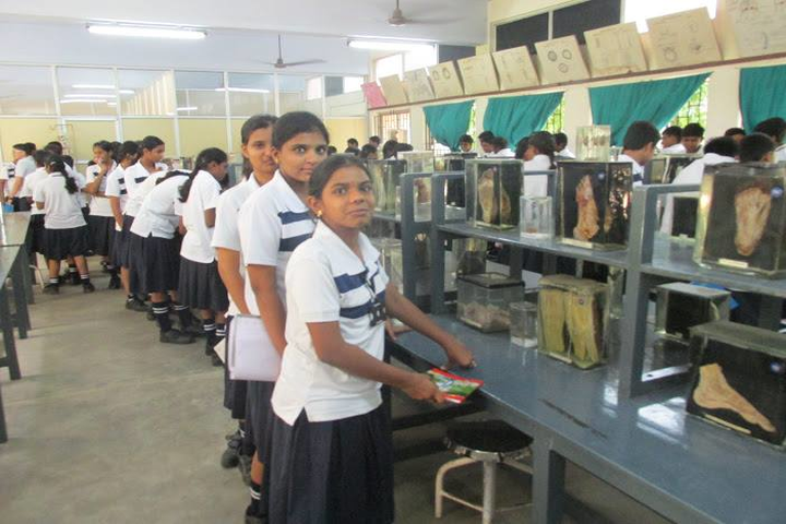 The Indian Public School-Bio Labs