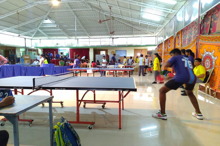 The Indian Public School-Indoor Games