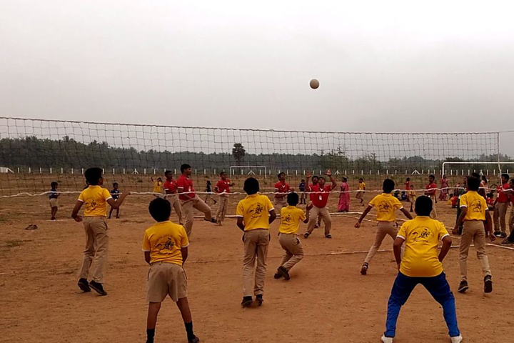 The Spice Valley Public School-Volley Ball Court