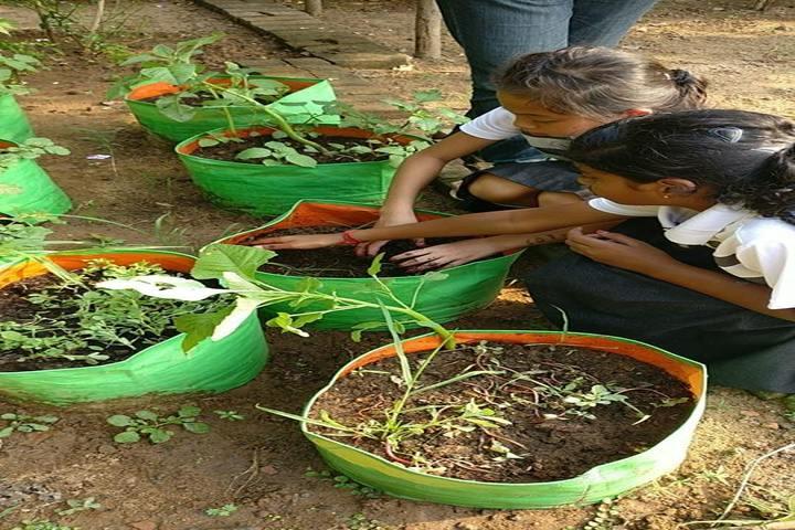 The Velammal International School-Plantation
