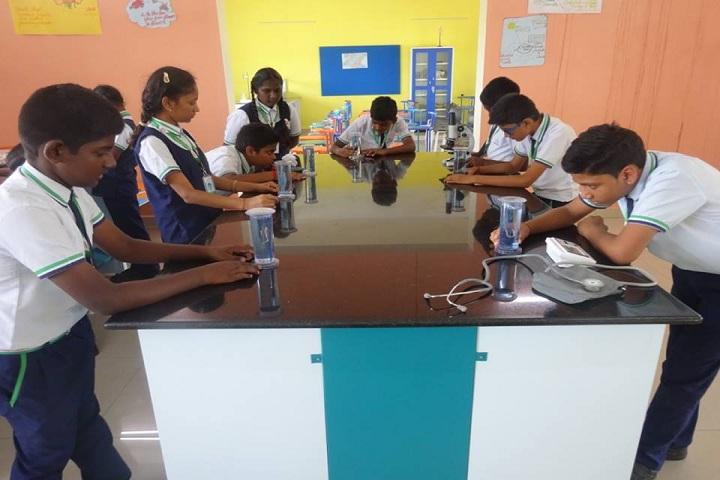 Tulip International School-Lab Activity