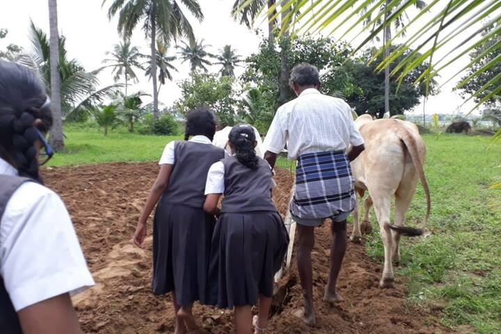 Velammal Bodhi Campus-Students In Farming