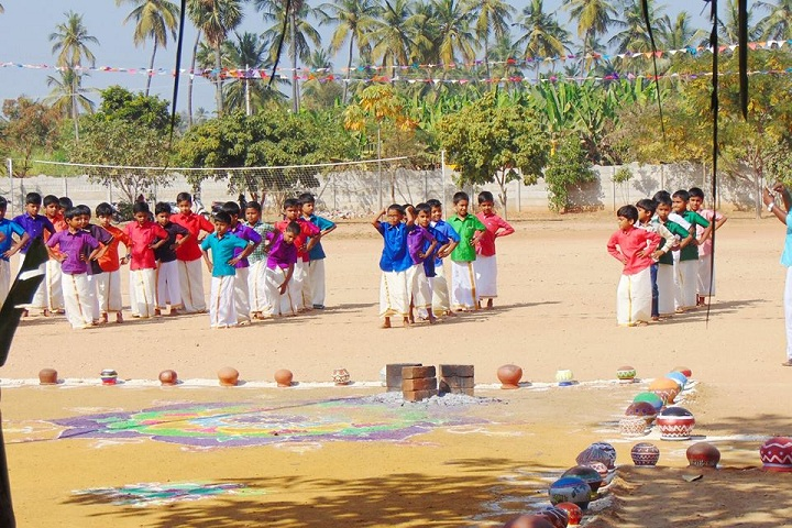 Vijay Vikas International School-Pongal Celebrations