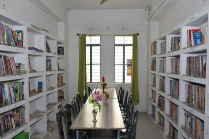 R N S Delhi Public School-Library