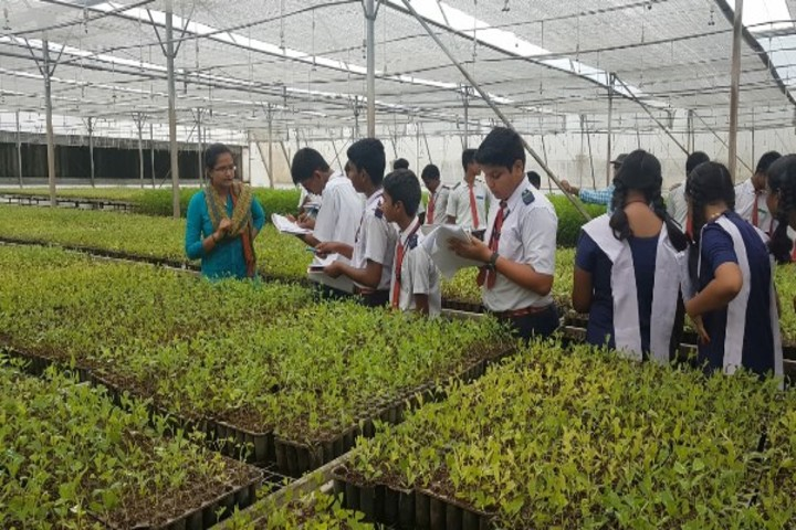 Bhadrachalam Public School And Jr. College-Visit To Plantation