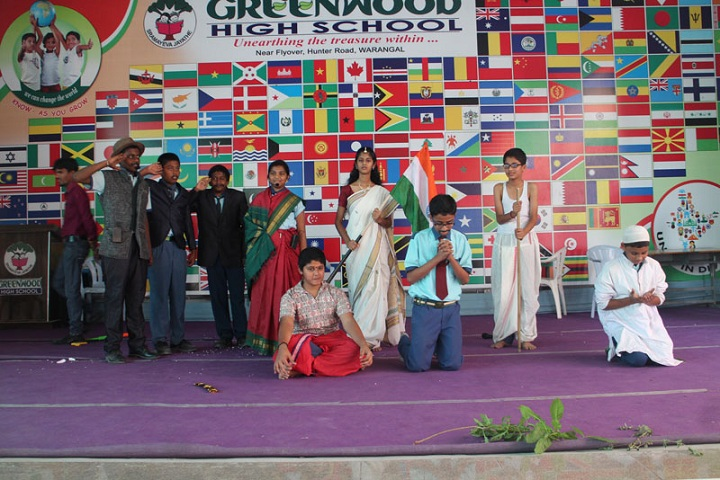 Greenwood High School-Cultural Activity
