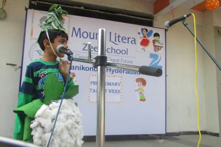 Mount Litera Zee School-Fancy Dress
