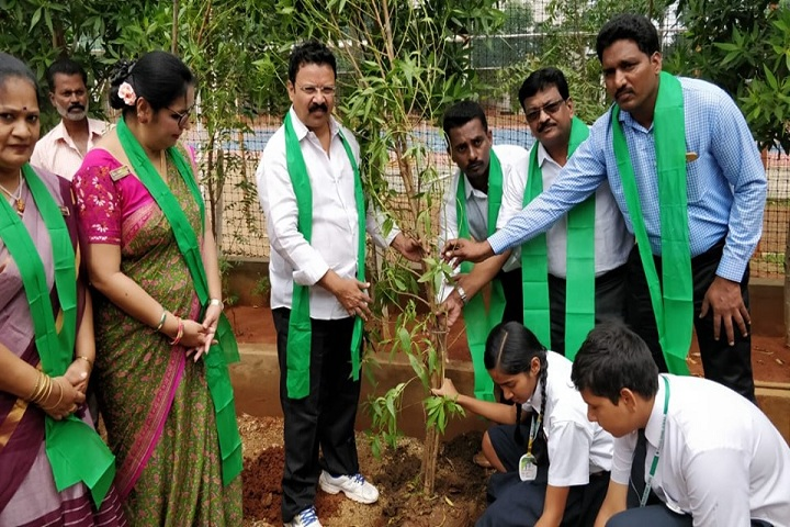 Pallavi Model School-Plant A Tree