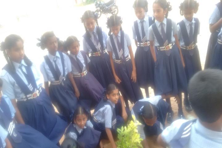 St Elizabeth Convent  E M High School-Plant A Tree
