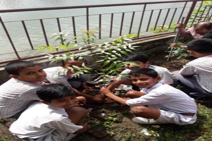 Ma Anandamayee Vidyapeeth-Tree Plant
