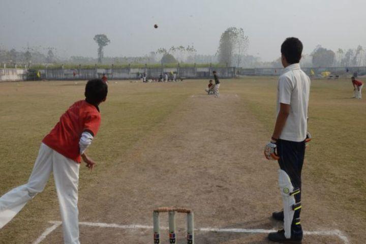 Acme Global School-Sports