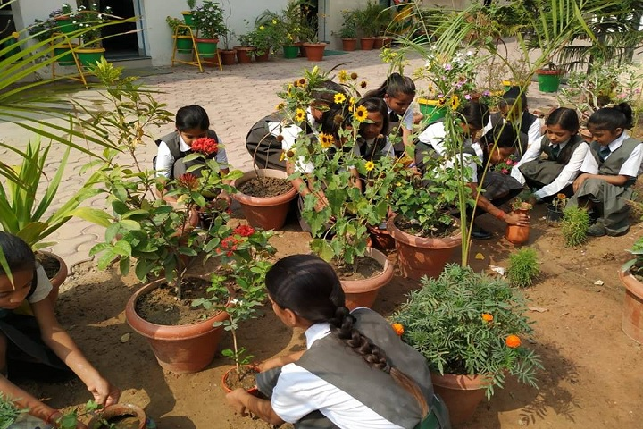 Aims International School - Plantation