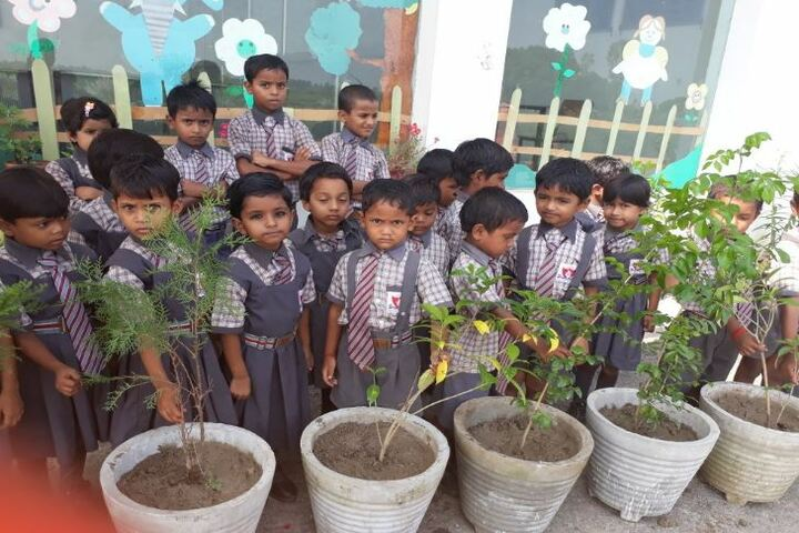 Akshar Jyothi Public School-Tree Plantations