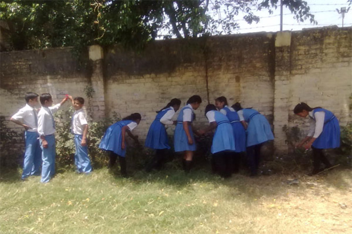 Aliganj Montessori School  - Swach Bharat