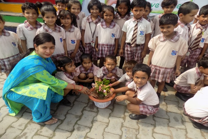 Allahabad Public School - Tree Plantation