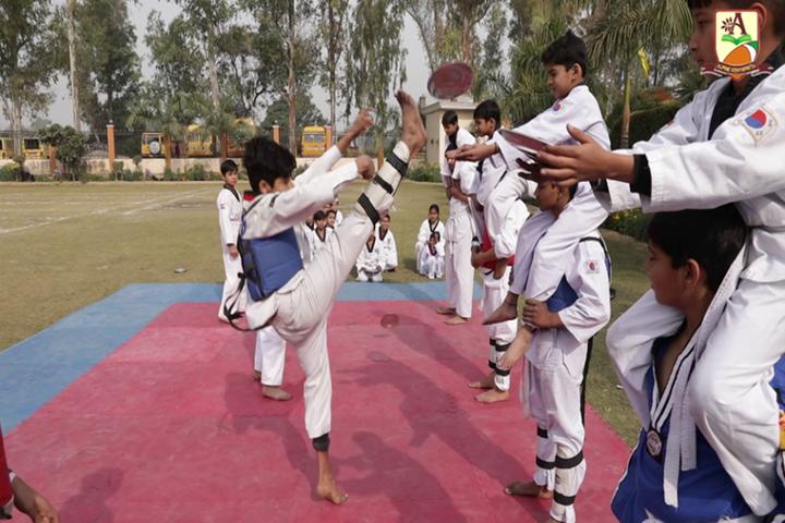 Alphine Vidyapeeth - Martial Arts