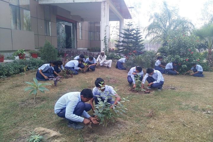 Ambition International School-Tree Plantation