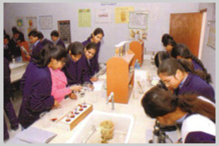 Amrit Public School-Chemistry Lab