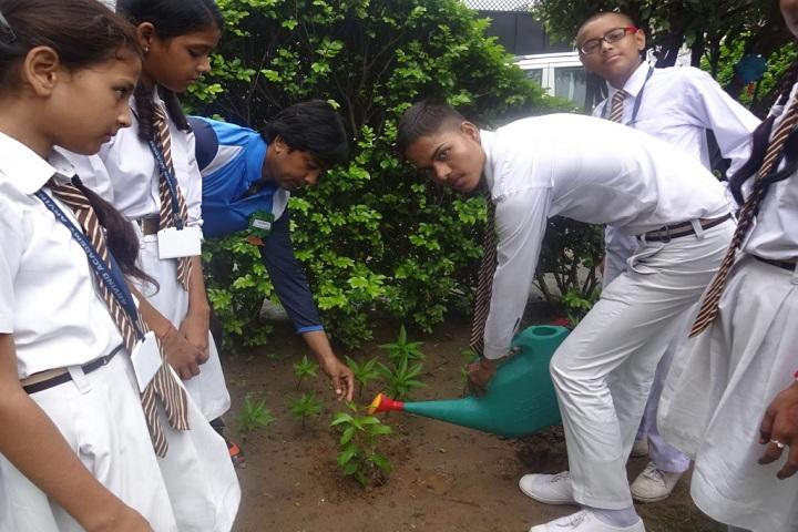Arvind Academy-Tree Plantation