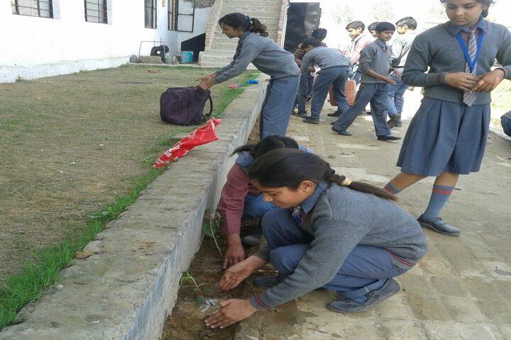 Arya Bandhu Public School-Plantation