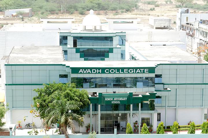 Avadh Collegiate-Campusview
