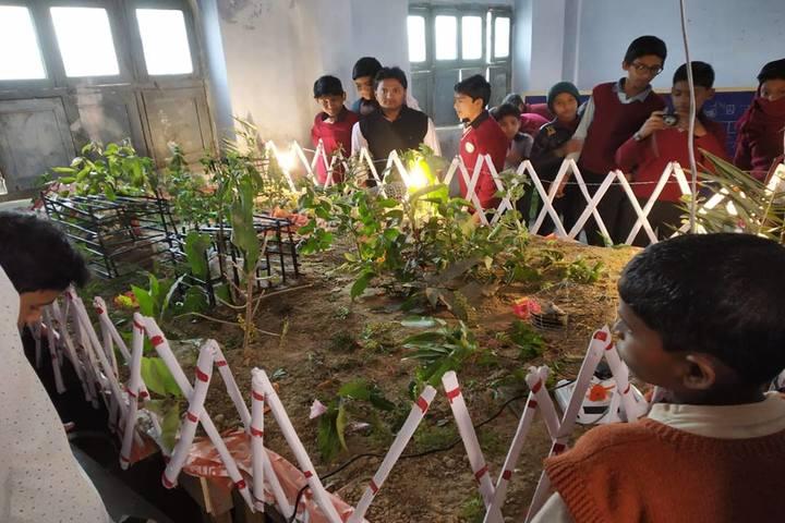 Salfia School-School Exhibition