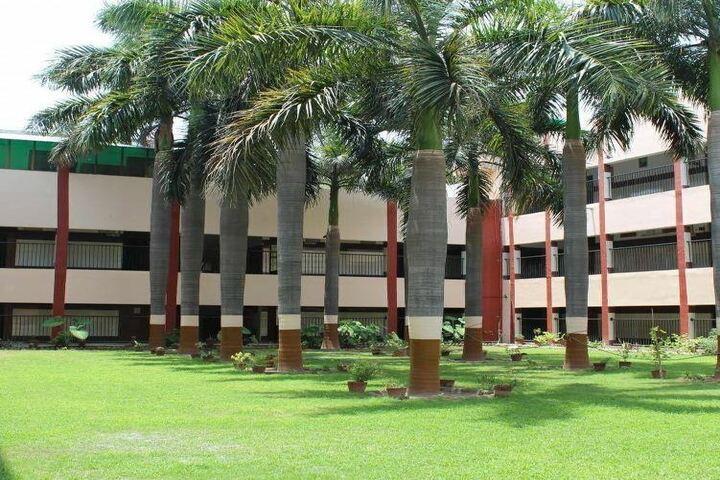 B Devras Saraswati Vidya Mandir-Garden