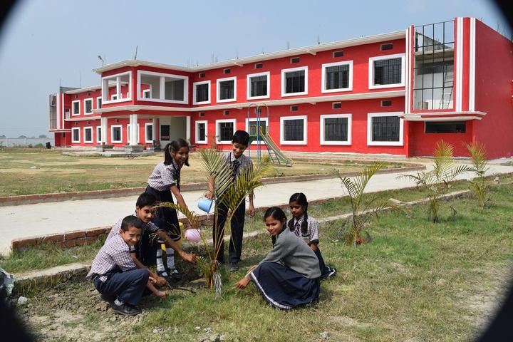 BSD Public School-Tree Plantation