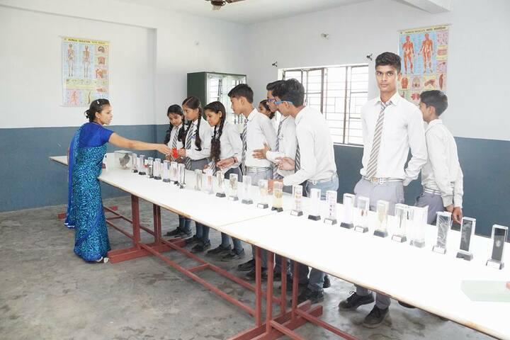 B N Public School-Biology Lab