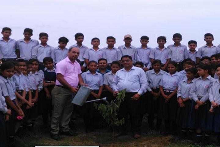 Baba International School-Plantation