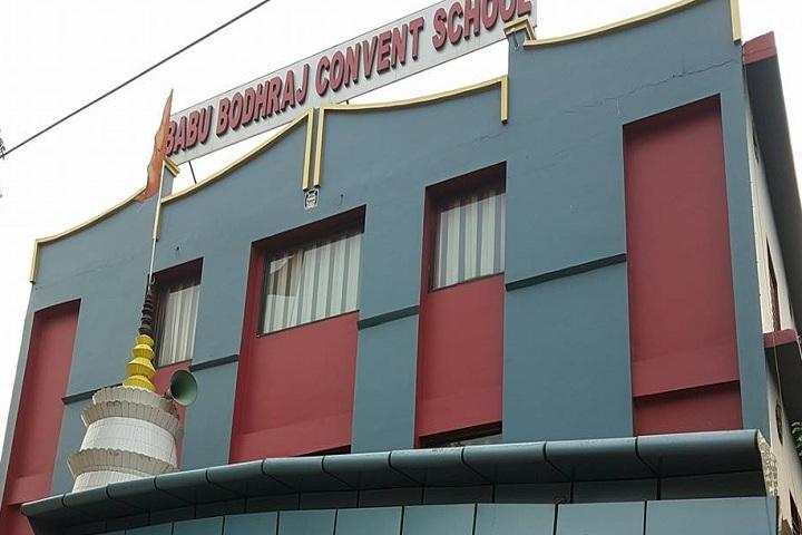 Babu Bodh Raj Convent School-School Building