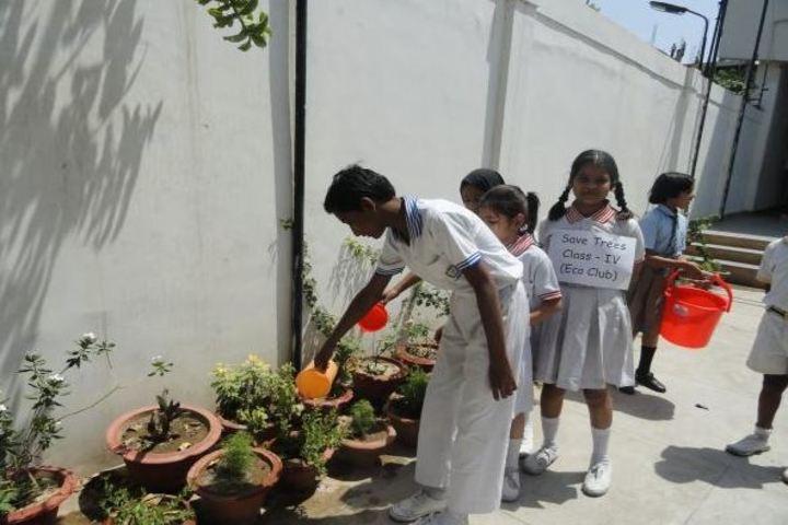 Bal Bharti School- Plantation