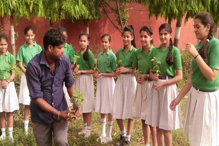 Bal Jyoti Public School-Plantation