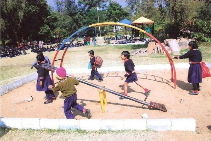 Bal Niketan Junior High School-Kids Play Park