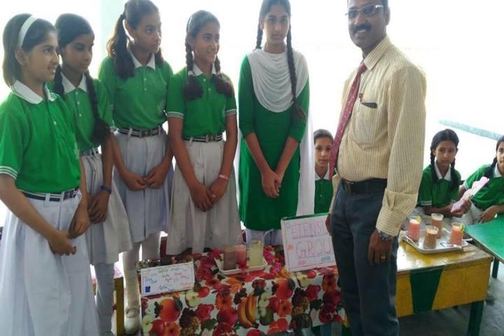 Bhagwant Public School-Activities