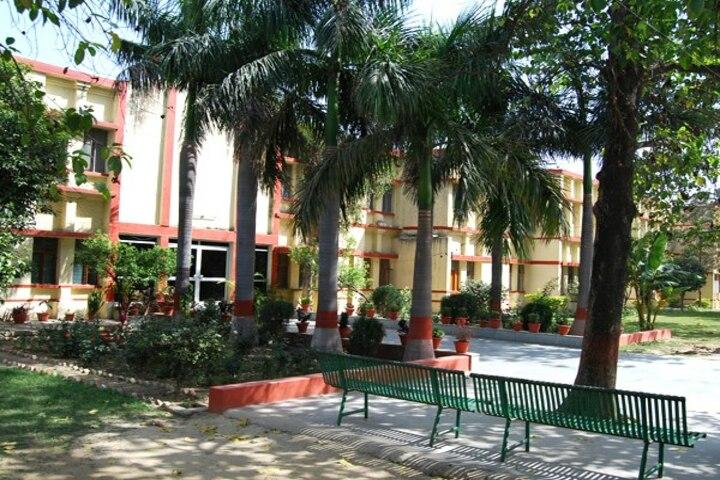 Bhartiya Vidya Bhavan Vidyalaya-School Campus