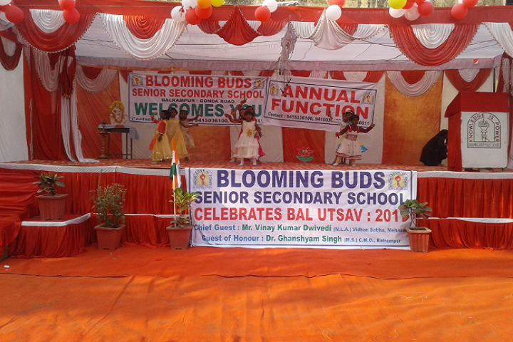Blooming Buds Senior Secondary School- Bal Utsav Celebrations