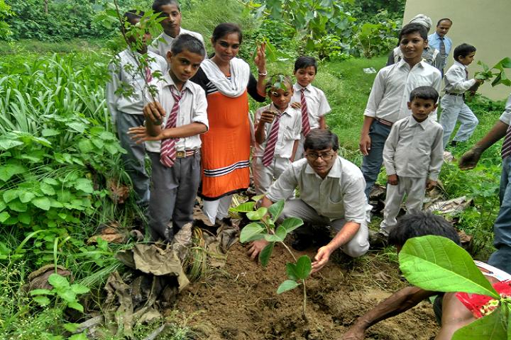 Blooming Buds Senior Secondary School- Plantation