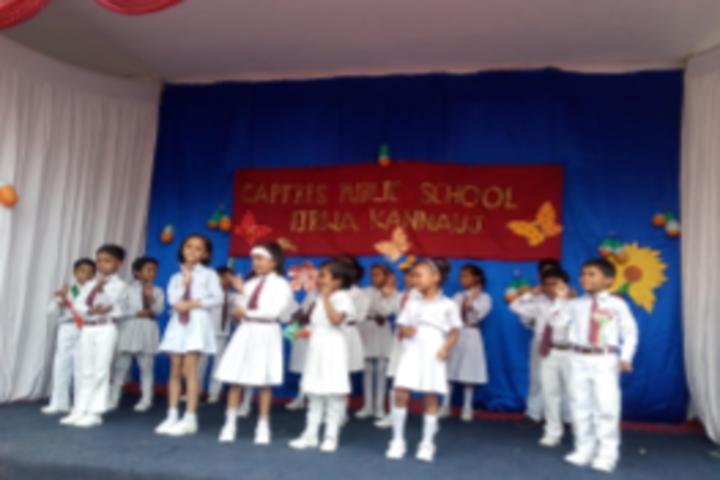 Capt B P S Public School-Activity